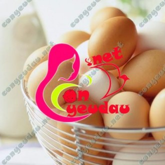 Bảo quản trứng trong tủ lạnh sao cho an toàn và lâu hư nhất
